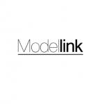 Modellink